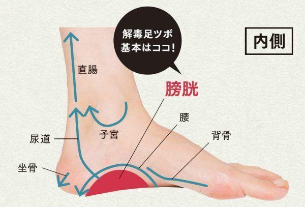 ゴリゴリは要注意! 痩せたい人のための「解毒」足ツボ