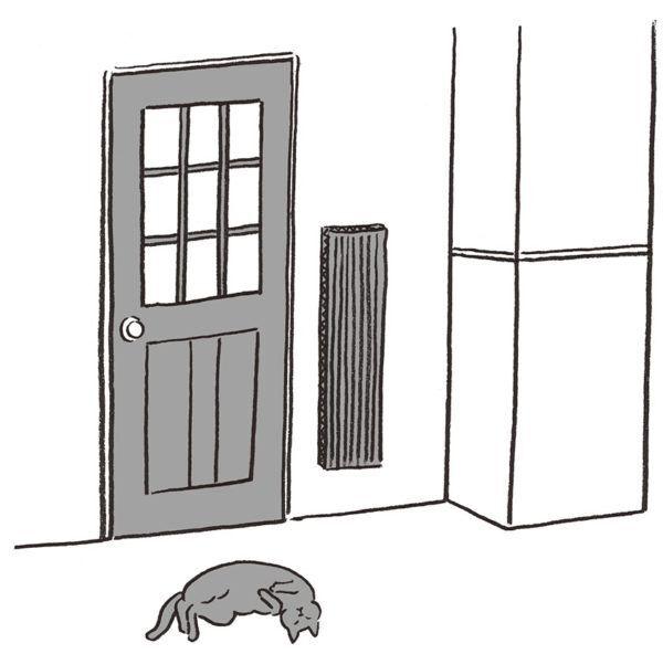 猫にしつけはできる? できない? 獣医が教えてくれました!