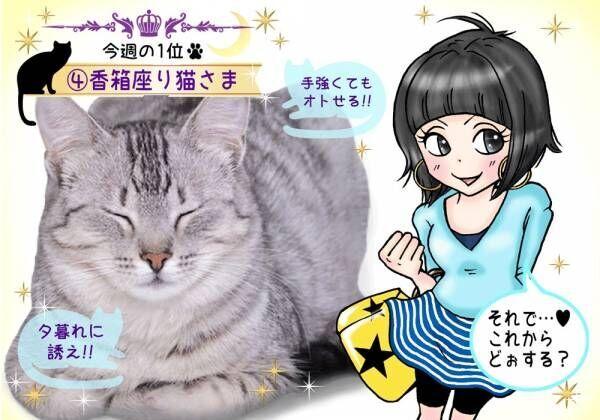 【猫さま占い】今週ハナが利くのは何猫さま? 7月1~7日運勢ランキング