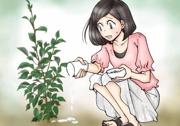 【知りたくなかった怖い話】庭の木が招いた奇想天外な事態に仰天! #17