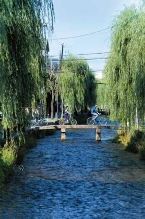 京都に来たら「朝活」でわくわく! おすすめアクティビティ4選