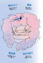 痩せにくい&便秘…夏こそ注意したい「腸冷え」 その対策とは?