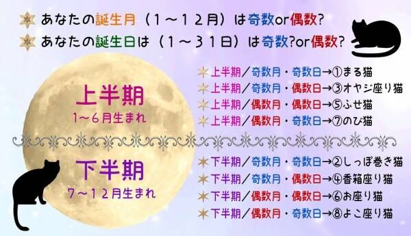 【猫さま占い】恋愛運低迷の猫さまは? 8月5日~11日運勢ランキング