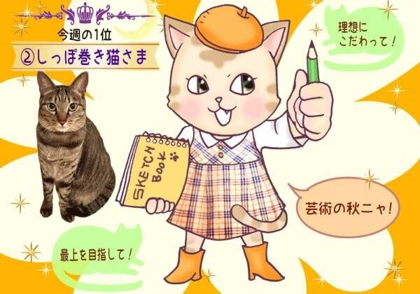 【猫さま占い】幸せを掴む猫さまは? 10月14日~10月20日運勢ランキング