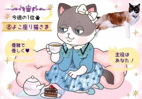 【猫さま占い】主役になれる猫さまは? 11月4日~11月10日運勢ランキング