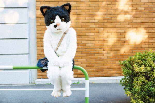 """木琴を叩き、歌って踊る猫!? 全国ツアーも行う話題の""""むぎ""""って?"""