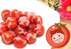 秒でできる新感覚トマトスイーツ!…夏にぴったり「簡単冷たいおやつ」 #134