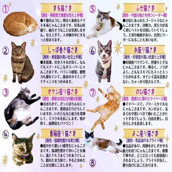 【猫さま占い】最強運となる猫さまは?  3月15日~3月21日運勢ランキング