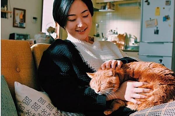 """黒木華との共演も! CMやドラマ出演の大人気""""猫さま""""7匹"""