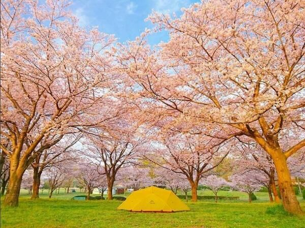 インスタグラマーさんに聞いたキャンプの楽しみ方。今年こそ「女子キャンプ」を始めてみませんか?[PR]