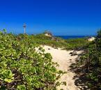 【死ぬまでに行きたい】聖地巡礼のハワイ旅で「幸運」をパワーチャージしませんか?