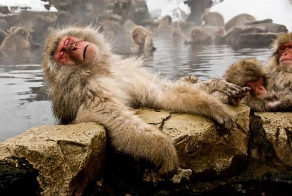 ストレスが溜まった時には!温泉療法で心身の疲れや肌トラブルを癒しましょう