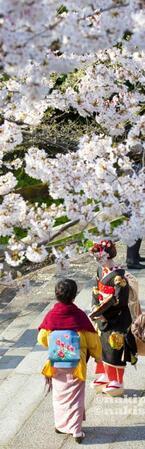 【あなたの知らない京都】Re:卒業式は見栄の張り合いですが、なにか?