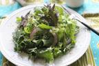 一品で旬野菜を満喫!つくりおき・シーザー風グリーンサラダ