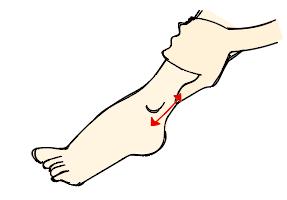 寝る前の10分で足首がキュッ!夏までにメリハリ脚になれるデイリーケア法