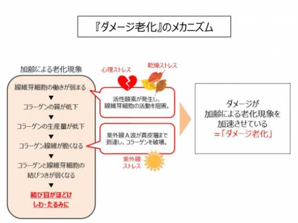 【新商品レビュー】アユーラ モイストリフトクリームでハリ肌回復♡【10/1発売】