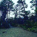 今年最後の山形と仙台のヨガ