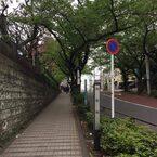 休日のお散歩に♪「谷根千エリア」のおすすめ朝カフェ~谷中篇~