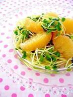 旬のグレープフルーツをあえてサラダで!アレンジ朝食5選