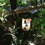 神楽坂でランチ/鳥茶屋