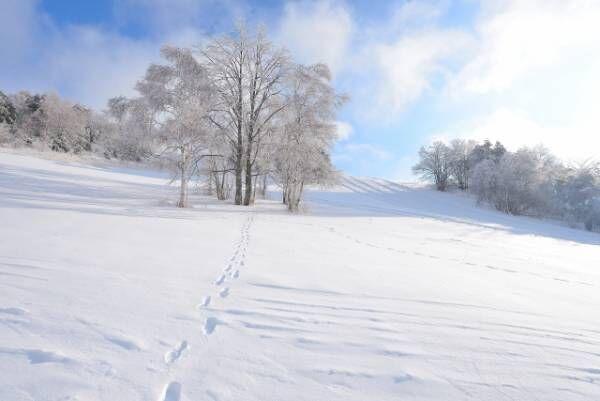 「雪山」を2単語の英語で言うと?