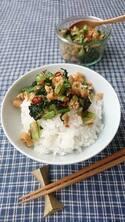 作り置きしておくと便利!ご飯がすすむ「小松菜ふりかけ」