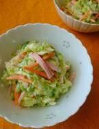 無限に食べられそう♪サラダの定番「春野菜のコールスロー」