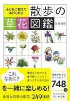 野の花探しにオススメ『子どもに教えてあげられる 散歩の草花図鑑』