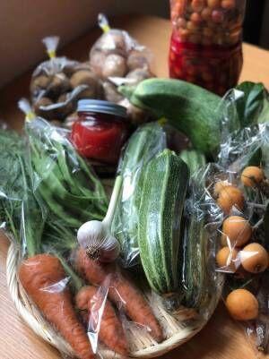 旬のズッキーニを中心ににんじんやモロッコインゲンやじゃがいもに玉ねぎ、びわや梅