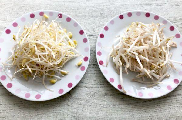 ダイエット&美肌に効果あり!「豆もやし」の魅力と朝ごはんレシピ3つ