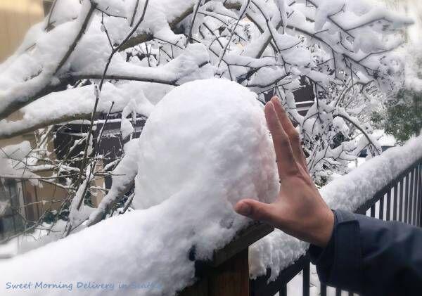 """シアトルの""""dead of winter"""""""