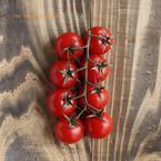 さっと和えてのせるだけ!簡単「トマトとしらすのブルスケッタ」