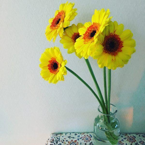花で目覚める朝