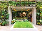 【渋谷】本日オープン!近未来的都市型ベーカリー「GREEN THUMB(グリーンサム)」