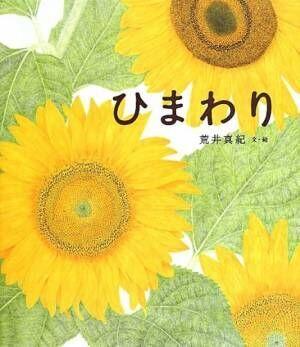 【日曜日の絵本】太陽の花が咲く季節に読みたい一冊『ひまわり』
