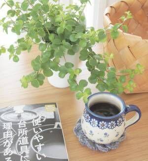 Rikaさんの朝の風景