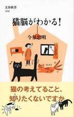 猫と楽しく、幸せに暮らすヒントが見つかる一冊『猫脳がわかる!』