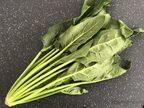 お肌の乾燥対策にも◎炊飯器で簡単「ほうれん草とベーコンのピラフ」
