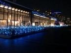 みなとみらい冬の風物詩!「パシフィコ横浜ウィンターイルミネーション2016」開催