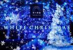 青の洞窟に雪が降る!「青の洞窟 SHIBUYA WHITE CHRISTMAS」開催