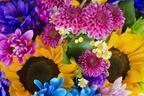 丸の内ハウスで蜷川実花のソロ・エキシビションが開催!鮮やかな蜷川ワールドを体感
