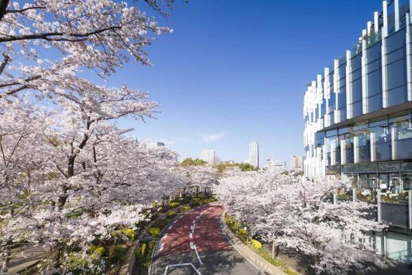3月18日・19日・20日の3連休に行きたい!東京のお出かけスポット・イベント10選