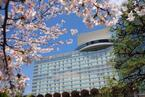 日本庭園の桜を愛でつつ召しあがれ!ホテルニューオータニに春爛漫レストランメニュー登場