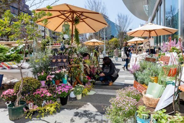 4月8日・9日は虎ノ門ヒルズへ!「虎ノ門フラワーマート」に過去最多のフラワーショップ出店