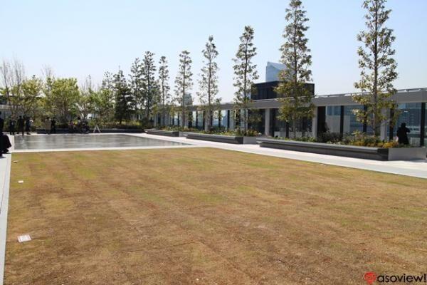 話題の新スポットGINZA SIXで注目!居心地のいい屋上庭園&最新アート
