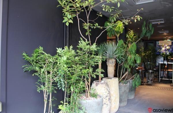 「キュープラザ二子玉川」がオープン!話題の新店舗を取材レポート