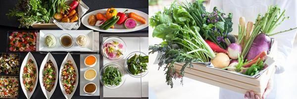 世界の料理が約50種類!グランドニッコー東京 台場に「GARDEN DINING」オープン