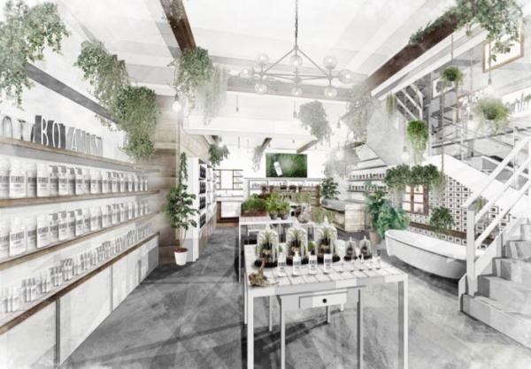 植物とすごすライフスタイルを体感!「ボタニスト」フラッグシップショップオープン