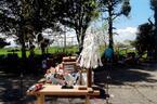 錦糸町「オリナス」で夏イベント開催!星空鑑賞やカブトムシつかみ捕りを親子で楽しもう