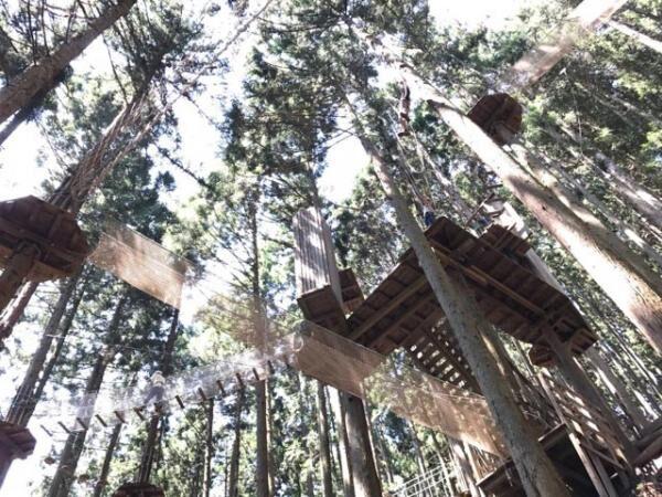 徳島県三好市に自然共生型アウトドアパーク「フォレストアドベンチャー・祖谷」オープン!